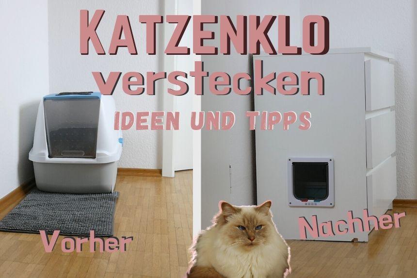 Katzenklo dekorativ verstecken