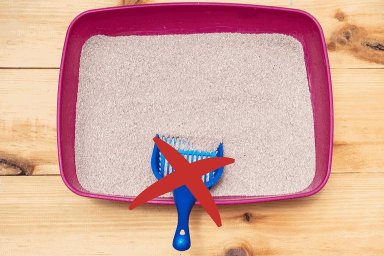 4 selbstreinigende Katzentoiletten im Test